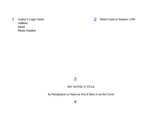 novel format
