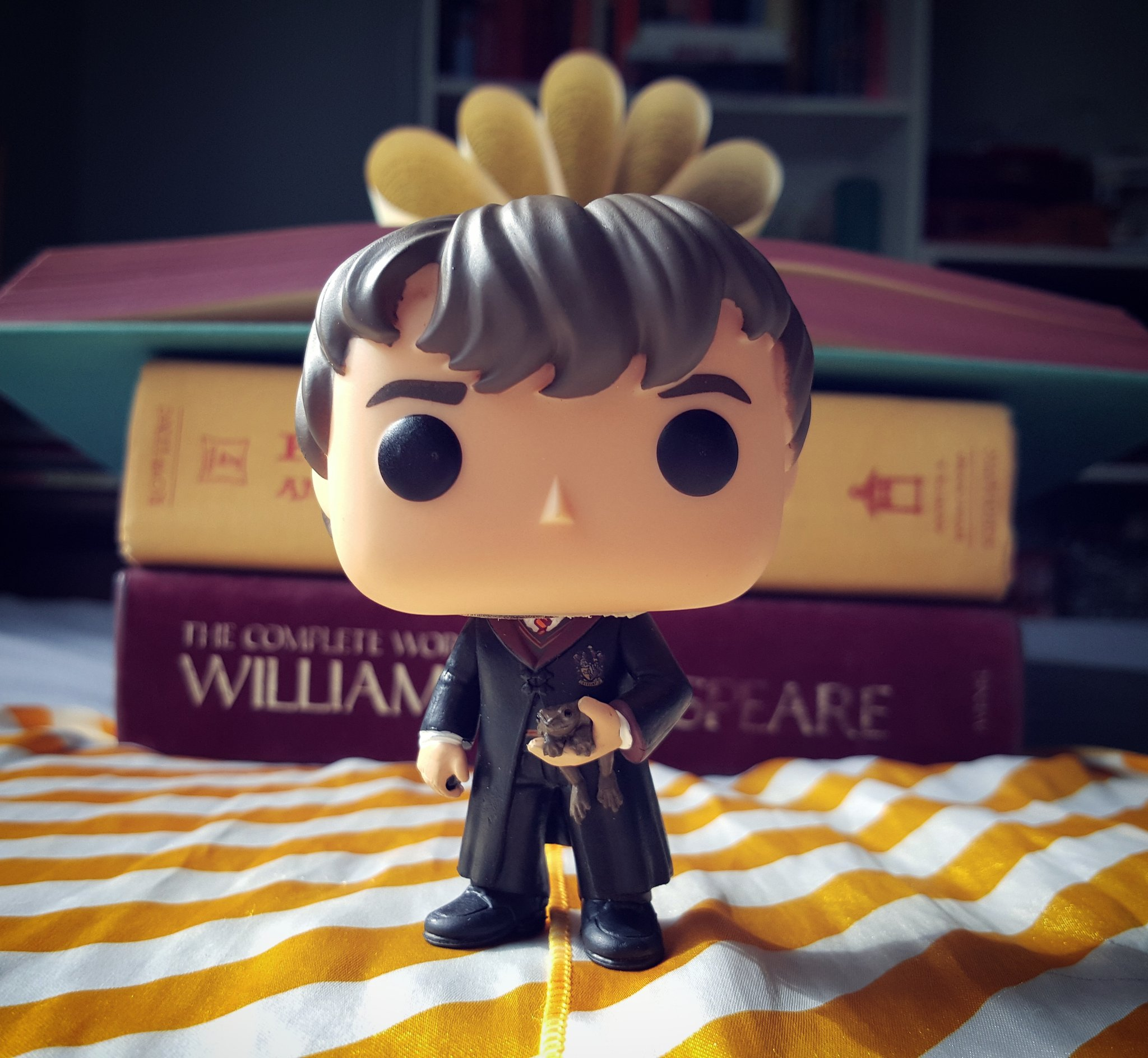 Which Hogwarts How Do You Belong To: Neville-Funko
